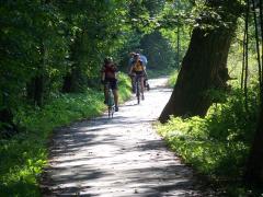 Cyklostezka - Jizera